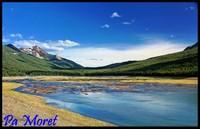 Lac marécageux